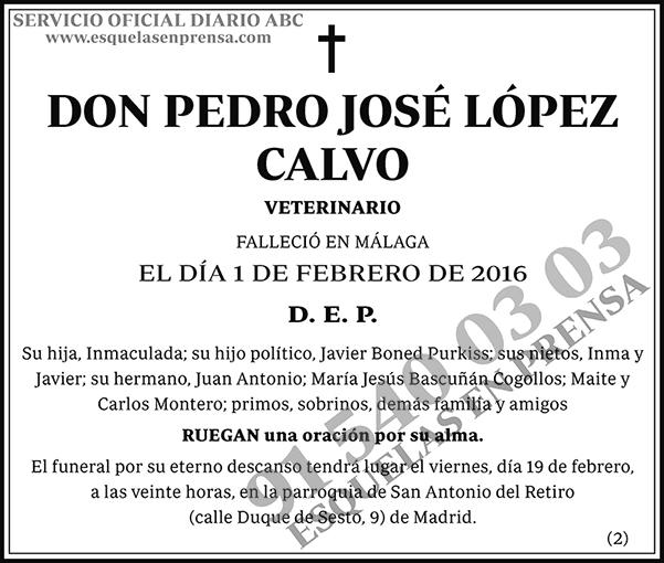 Pedro José López Calvo